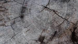 Wat is het verschil tussen nieuw en gerecycled teak hout?
