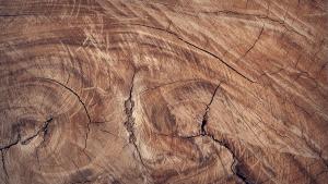 Wat zijn massief houten meubelen?
